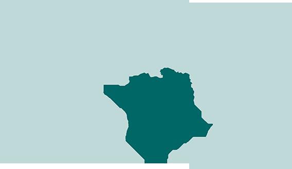 Afrique et Moyen-Orient